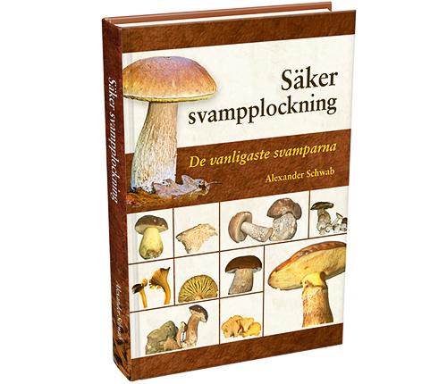 Säker svampplockning