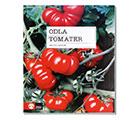 Odla tomater