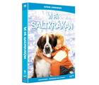 Vi på Saltkråkan DVD-box