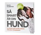 Så smart är din hund